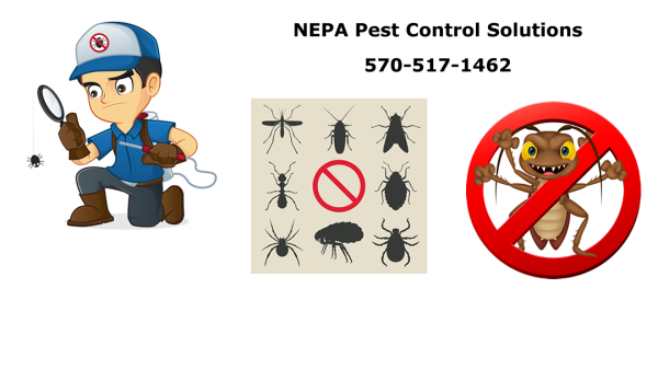 NEPA-Pest-Control-Solutions-Banner